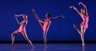 Dance Theatre of Harlem by Renata Pavam
