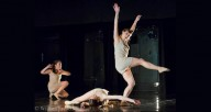 Photo courtesy of Cerqua Rivera Dance Theatre