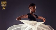 Eight dance organizations form CBDLP: Ayodele Drum & Dance, Chicago Multiculural Dance Company, Deeply Rooted Dance Theater, Forward Momentum Chicago, Joel Hall Dancers & Center, Muntu Dance Theatre of Chicago, Najwa Dance Corp and Red Clay Dance Company
